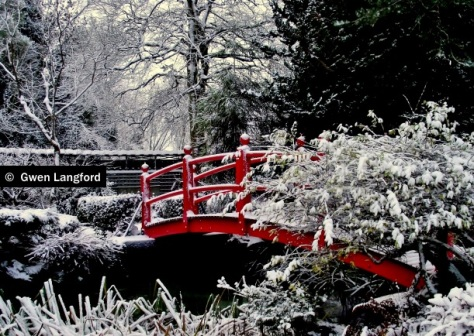 Kildare during the big freeze in 2010